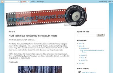http://imageliner.blogspot.com/2012/12/technique-for-stanley-forest-burn.html