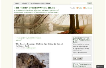 http://wolfpreservation.me/2013/04/26/the-secret-reasons-wolves-are-dying-in-denali-national-park/