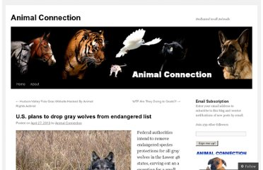 http://animalconnectionac.wordpress.com/2013/04/27/u-s-plans-to-drop-gray-wolves-from-endangered-list/