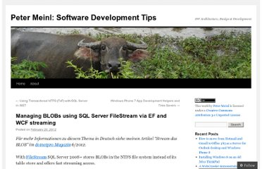 http://petermeinl.wordpress.com/2012/02/20/managing-blobs-using-sql-server-filestream-via-ef-and-wcf-streaming/