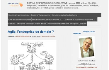 http://blog.ific-coaching.com/2013/03/15/agile-lentreprise-de-demain/