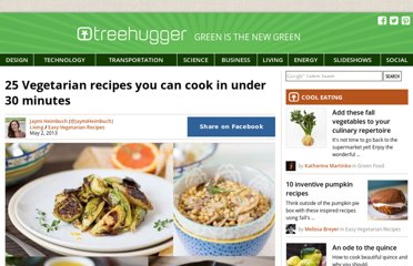 http://www.treehugger.com/easy-vegetarian-recipes/25-vegetarian-recipes-you-can-cook-under-30-minutes.html