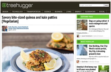 http://www.treehugger.com/easy-vegetarian-recipes/bite-sized-quinoa-kale-patties.html
