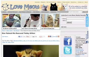 http://lovemeow.com/2010/04/man-raised-rescued-tabby-kitten/