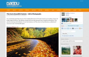 http://daddu.net/this-damn-beautiful-autumn-fall-in-photographs/