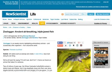 http://www.newscientist.com/article/dn19512-zoologger-ancient-airbreathing-triplejawed-fish.html
