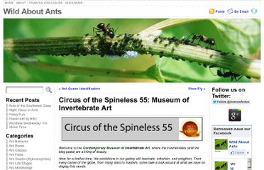 http://blog.wildaboutants.com/2010/09/30/circus-of-the-spineless-55-museum-of-invertebrate-art/