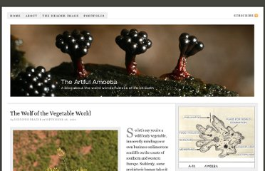 http://theartfulamoeba.com/2010/09/26/brassica-olearacea-the-wolf-of-the-vegetable-world/