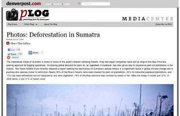 http://blogs.denverpost.com/captured/2010/10/05/captured-deforestation-in-sumatra/2470/