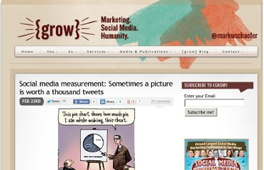 http://www.businessesgrow.com/2010/02/23/social-media-measurement-sometimes-a-picture-is-worth-a-thousand-tweets/