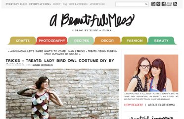 http://abeautifulmess.typepad.com/my_weblog/2010/10/tricks-treats-lady-bird-owl-costume-diy-by-chelsea.html