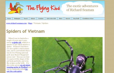 http://www.richard-seaman.com/Insects/Vietnam/Spiders/Highlights/index.html