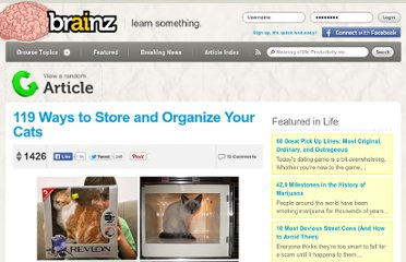 http://brainz.org/119-ways-store-and-organize-your-cats/