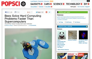 http://www.popsci.com/science/article/2010-10/bees-beat-computers-ability-solve-complex-math-problem