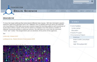 http://cbs.fas.harvard.edu/science/connectome-project/brainbow
