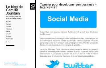 http://www.camillejourdain.fr/tweeter-pour-developper-son-business-interview-1/