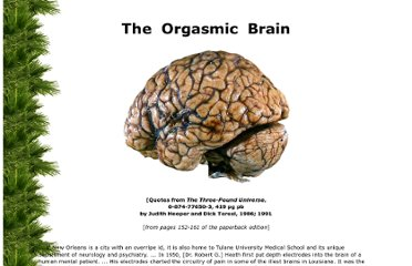 http://www.paradise-engineering.com/brain/