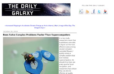 http://www.dailygalaxy.com/my_weblog/2010/10/bees-solve-complex-problems-faster-than-supercomputers.html
