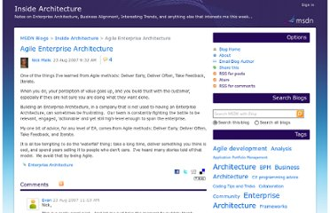 http://blogs.msdn.com/b/nickmalik/archive/2007/08/23/agile-enterprise-architecture.aspx
