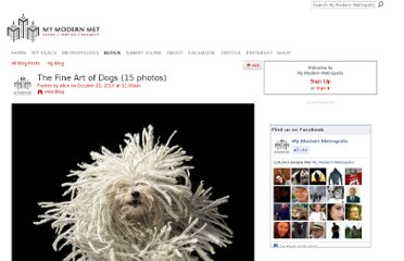 http://www.mymodernmet.com/profiles/blogs/the-fine-art-of-dogs-15-photos