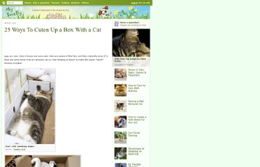 http://mysmelly.com/content/cats/25-ways-to-cuten-up-a-box-with-a-cat.htm