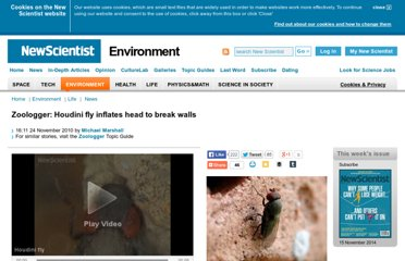 http://www.newscientist.com/article/dn19764-zoologger-houdini-fly-inflates-head-to-break-walls.html