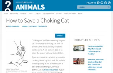 http://animals.howstuffworks.com/pets/how-to-save-a-choking-cat.htm