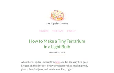 http://thehipsterho.me/2010/01/how-to-make-a-tiny-terrarium-in-a-light-bulb/