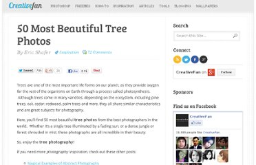 http://creativefan.com/50-most-beautiful-tree-photos/