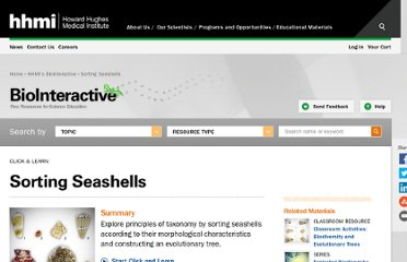 http://www.hhmi.org/biointeractive/activities/shells/online/index.html