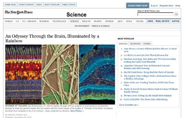 http://www.nytimes.com/2010/11/30/science/30brain.html?_r=2&src=ISMR_HP_LO_MST_FB