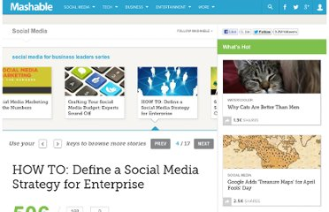http://mashable.com/2010/12/07/social-media-strategy-enterprise/