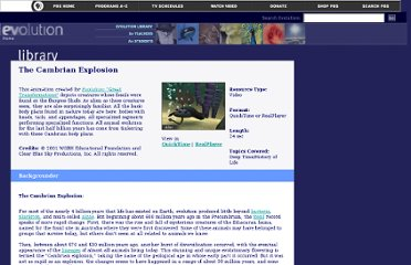 http://www.pbs.org/wgbh/evolution/library/03/4/l_034_02.html