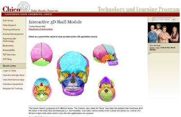 http://www.csuchico.edu/tlp/info/projects/skull/