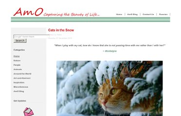 http://amolife.com/image/animals/cats-in-the-snow.html