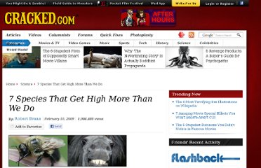 http://www.cracked.com/article_17032_7-species-that-get-high-more-than-we-do.html