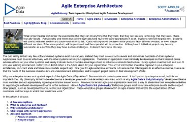 http://www.agiledata.org/essays/enterpriseArchitecture.html