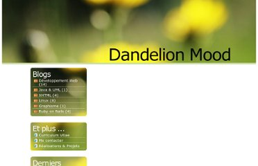 http://dandelionmood.com/Ruby-on-Rails-Filtres-Flashes.html
