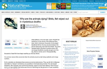 http://www.naturalnews.com/030914_dead_fish_birds.html