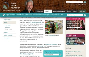 http://www.davidsuzuki.org/issues/health/science/toxics/dirty-dozen-cosmetic-chemicals/