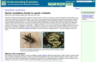http://evolution.berkeley.edu/evolibrary/news/061201_quietcrickets